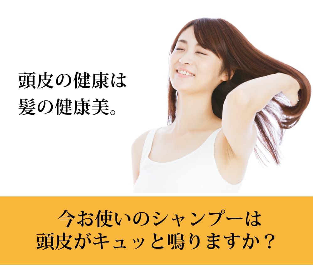 不動の人気No.1 魂のハッピーシャンプー! 頭皮の健康は髪の健康美