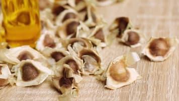 シアモリンガクリーム ワサビノキ種子油(モリンガオイル)