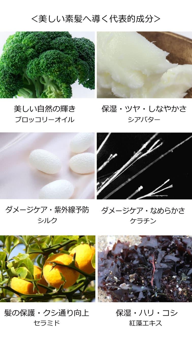 ブロッコリー種子オイル シアバター シルク ケラチン セラミド 海藻エキス