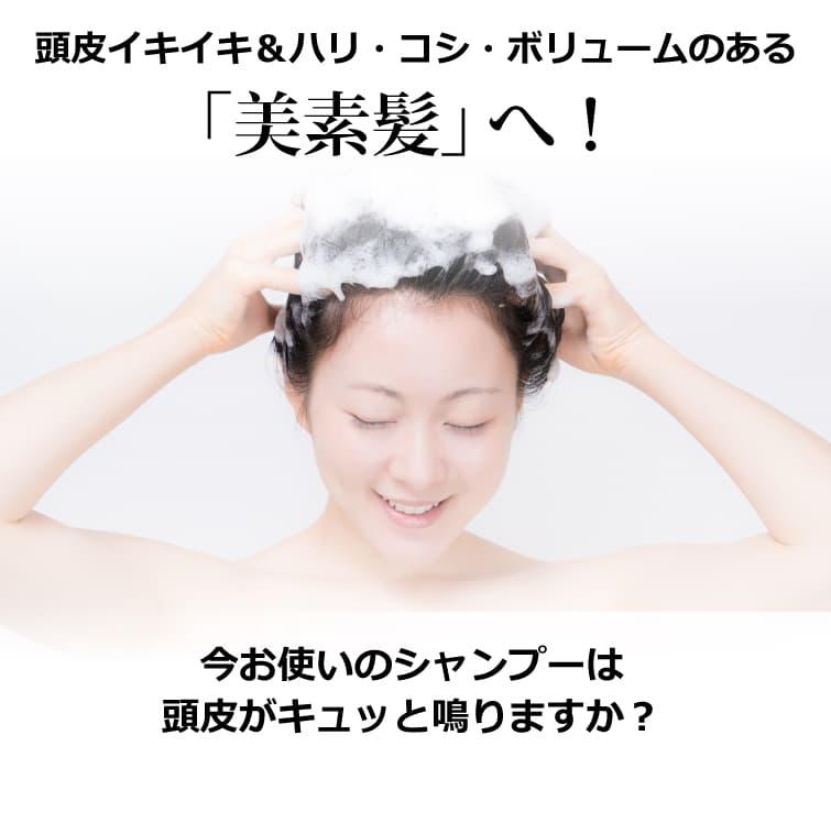 魂のハッピースカルプハーブ泡シャンプー!(詰替用) 300ml