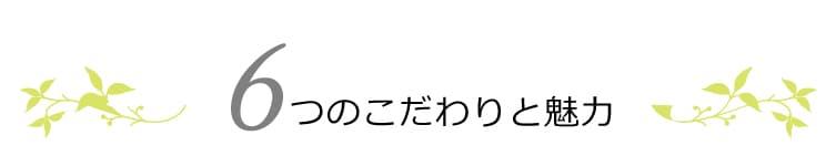 魂のハピースカルプハーブ泡シャンプー!(詰替用)6つのこだわりと魅力