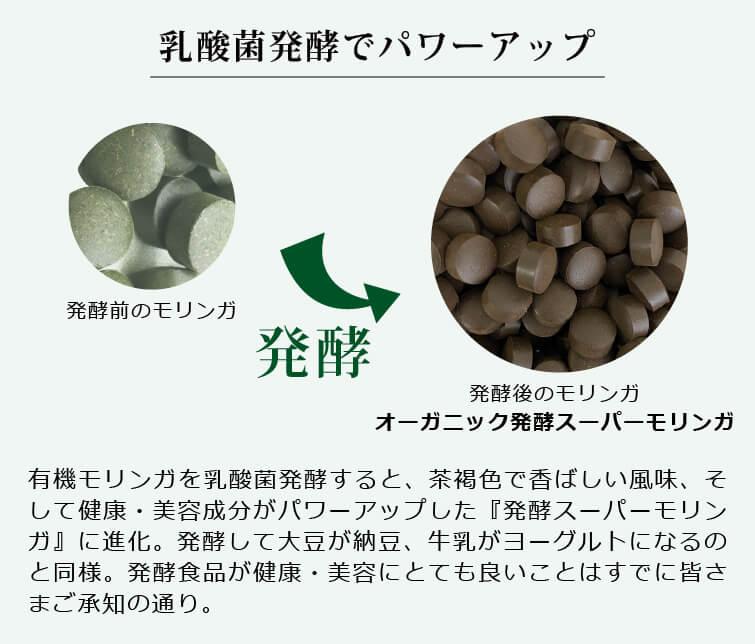 オーガニック発酵スーパーモリンガ 乳酸菌発酵でパワーアップ