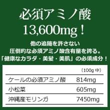 オーガニック発酵スーパーモリンガ 必須アミノ酸13,600mg!