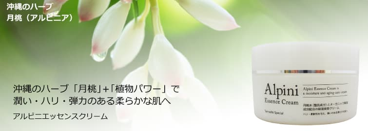 <当店オリジナル誕生>アルピ二エッセンスクリーム