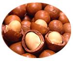 マカデミアナッツ油