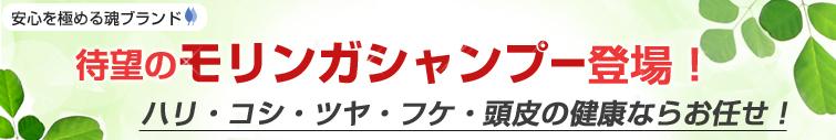 <安心を極める魂ブランド> 待望のモリンガシャンプー登場! ハリ・コシ・ツヤ・フケ・頭皮の健康ならお任せ!