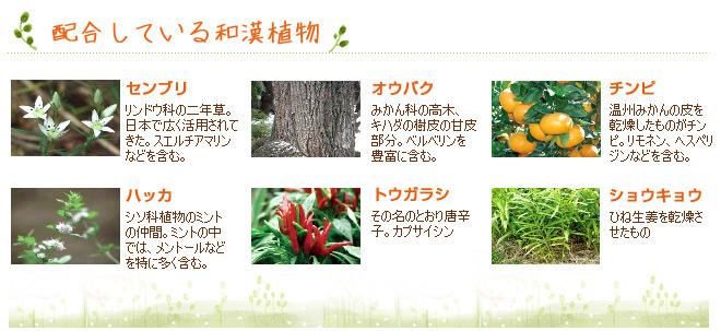 ハーティハートヘアローションの配合している和漢植物;センブリ、オウバク、チンピ、ショウキョウ、ハッカ、トウガラシ