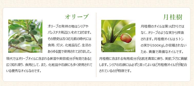 """ガール石鹸は新鮮な""""オリーブオイル""""と最高級の""""月桂樹オイル""""で作ったお肌に優しい天然植物性の無添加手作り石鹸"""