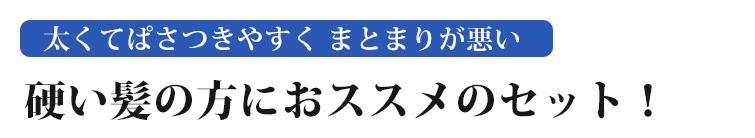 【ジザニアシャンプーR+ジザニアリンスG(スーパートリートメント)セット】太くてぱさつきやすく まとまりが悪い 硬い髪の方におススメのセット!