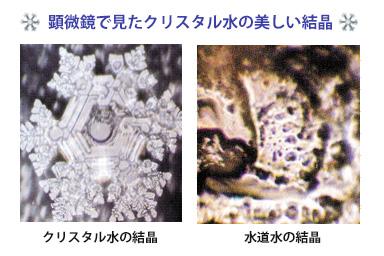 顕微鏡で見たクリスタル水の美しい結晶