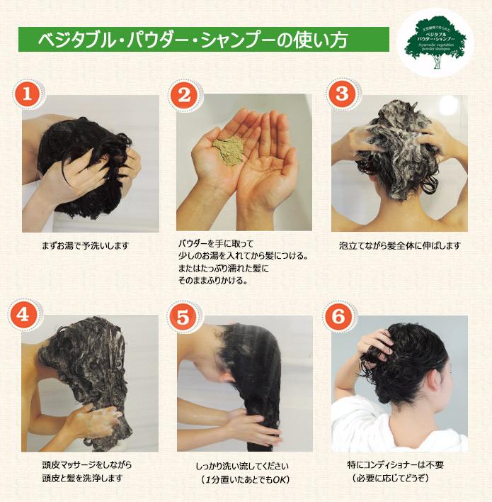 1.まずお湯で予洗いします 2.パウダーを手に取ってつける。または髪にふりかける。  3.泡立てながら髪全体に伸ばします 4.頭皮マッサージをしながら頭皮と髪を洗浄します 5.しっかり洗い流してください(1分置いたあとでもOK) 6.特にコンディショナーは不要(必要に応じてどうぞ)