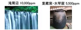滝周辺 10,000ppm  重蔵窯・水琴窟 5,500ppm
