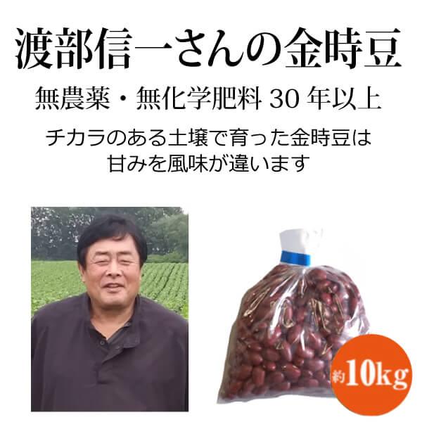 十勝平野で無農薬・無化学肥料栽培30年以上 渡部信一さんの金時豆
