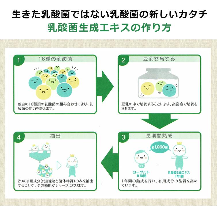生きた乳酸菌ではない乳酸菌の新しいカタチ  乳酸菌生成エキスの作り方