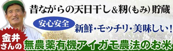 金井さんの無農薬有機アイガモ農法のお米。昔ながらの天日干し&籾(もみ)貯蔵。だから新鮮・モッチリ・美味しい!
