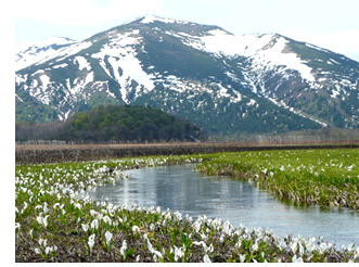 群馬県の北部・尾瀬にほど近い沼田盆地