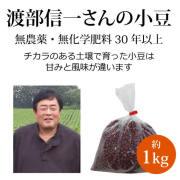 渡部信一さんの小豆1kg