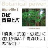 植物のパワーに着目!「青森ヒバ」
