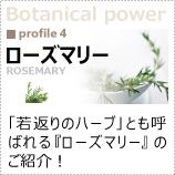 植物のパワーに着目!「ローズマリー」