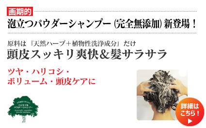 【画期的】 泡立つパウダーシャンプー(完全無添加)新登場! 原料は『天然ハーブ+植物性洗浄成分』だけ 頭皮スッキリ爽快&髪サラサラ ツヤ・ハリコシ・ボリューム・頭皮ケアに